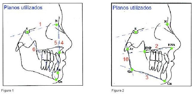 atlas de cefalometria y analisis facial pdf gratis